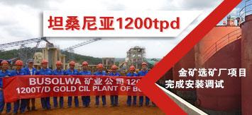 坦桑尼亚1200t/d金矿选矿厂