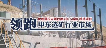 伊朗夏拉夫阿巴德300t/d金矿浮选项目